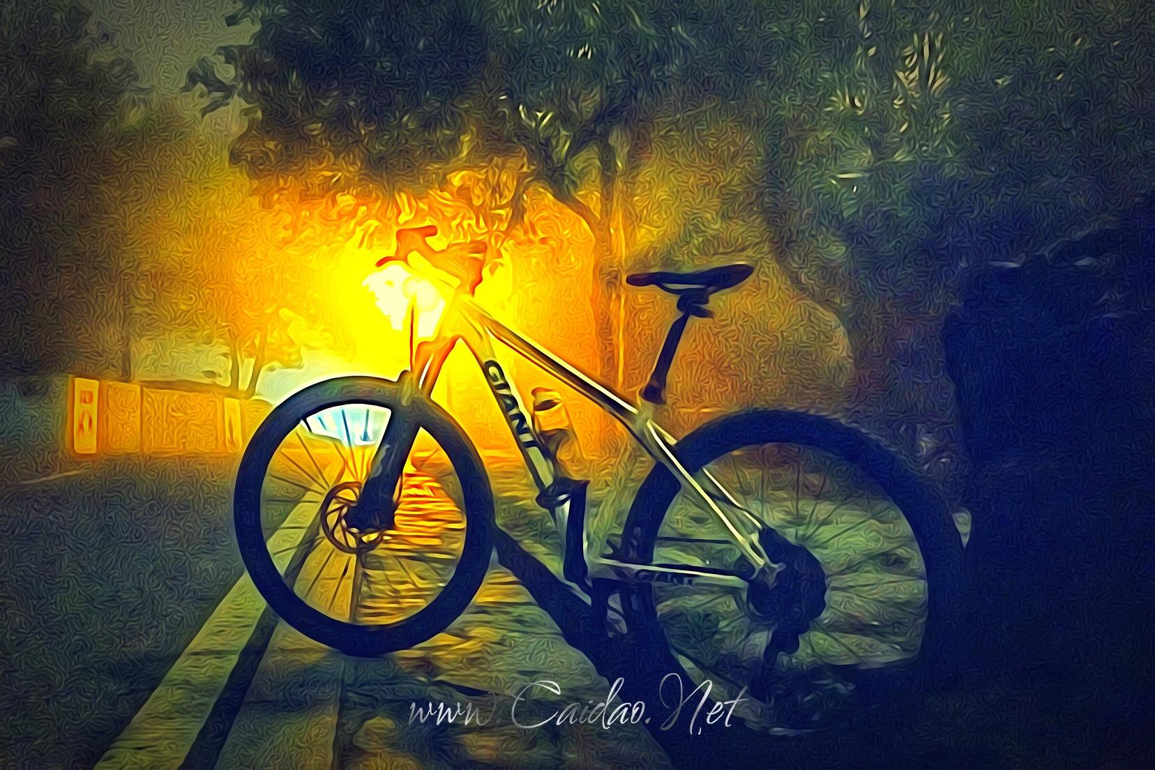 骑行爱好者李银华的自行车